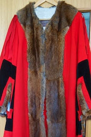 Mayor's robe